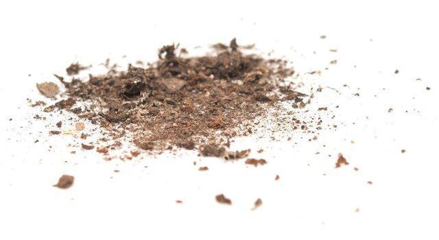 میکروب های خاک، منبعی غنی از کربن هستند